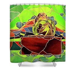 Christ In Stained Glass Shower Curtain