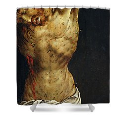 Christ On The Cross Shower Curtain by Matthias Grunewald