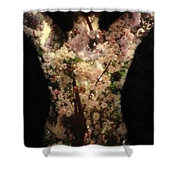 Christina Shower Curtain by Arla Patch