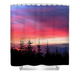 Shower Curtain featuring the photograph Christmas 2016 Sunset by Tyra OBryant