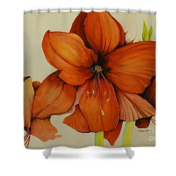 Shower Curtain featuring the painting Christmas Amaryllis by Rachel Lowry