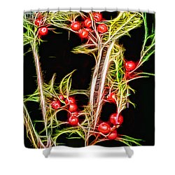 Shower Curtain featuring the photograph Christmas Berries by EricaMaxine  Price
