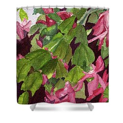 Shower Curtain featuring the painting Christmas Cactus by Lynne Reichhart