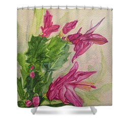 Christmas Cactus Shower Curtain by Wendy Shoults