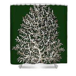Shower Curtain featuring the photograph Christmas Coral Tree Earnst Hackel by Suzanne Powers