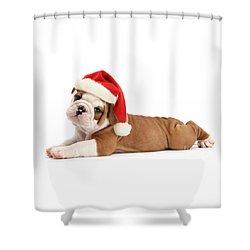 Christmas Cracker Shower Curtain