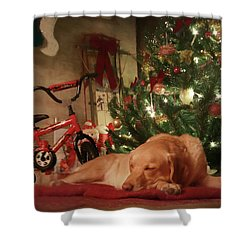 Shower Curtain featuring the photograph Christmas Eve by Lori Deiter