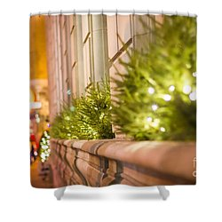 Christmas In St Paul Shower Curtain