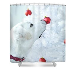 Christmas Lab Shower Curtain