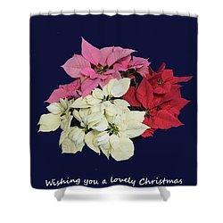 Christmas Pointsettias Shower Curtain