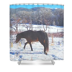 Christmas Roan El Valle I Shower Curtain