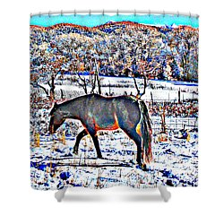 Christmas Roan El Valle II Shower Curtain