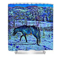Christmas Roan El Valle IIi Shower Curtain by Anastasia Savage Ealy