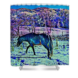 Christmas Roan El Valle Iv Shower Curtain