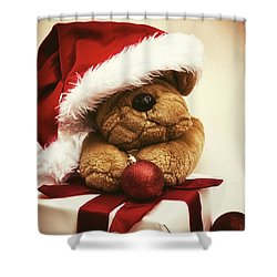 Christmas Teddy Bear Shower Curtain by Wim Lanclus