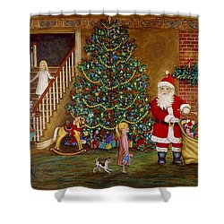Christmas Visitor Shower Curtain by Linda Mears