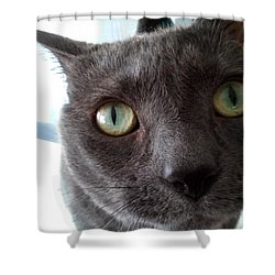 Shower Curtain featuring the photograph Christopher by Christopher Woods