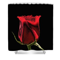 Chromatic Rosebud Shower Curtain by Kristin Elmquist