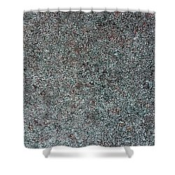 Chrome Mist Shower Curtain