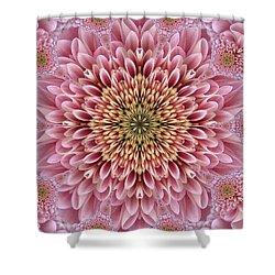Chrysanthemum Beauty Shower Curtain