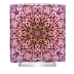 Chrysanthemum Kaleidoscope Shower Curtain