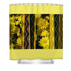 Shower Curtain featuring the photograph Chrysanthemums On Display by Brooks Garten Hauschild