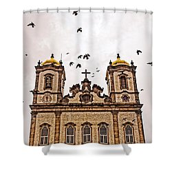 Shower Curtain featuring the photograph Church Birds by Kim Wilson