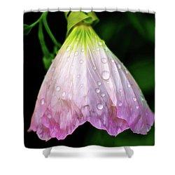 Cinderella's Dress Shower Curtain