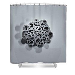 Shower Curtain featuring the photograph Cinnamon Brain by Lora Lee Chapman