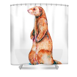 Shower Curtain featuring the painting Cinnamon Ferret by Zaira Dzhaubaeva