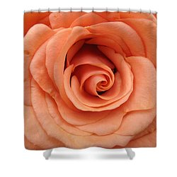Cinnamon Rose Shower Curtain
