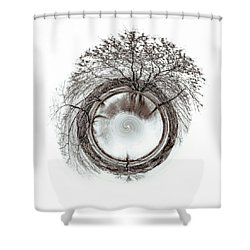 Shower Curtain featuring the photograph Circle Of Trees by Wade Brooks