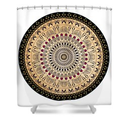 Shower Curtain featuring the digital art Circularium No 2637 by Alan Bennington