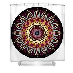 Circularium No 2639 Shower Curtain