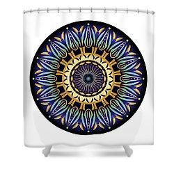 Circularium No 2641 Shower Curtain