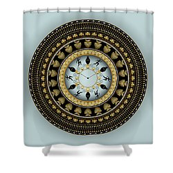 Shower Curtain featuring the digital art Circularium No 2658 by Alan Bennington