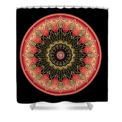 Shower Curtain featuring the digital art Circularium No 2659 by Alan Bennington