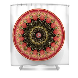 Shower Curtain featuring the digital art Circularium No 2660 by Alan Bennington
