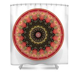 Circularium No 2660 Shower Curtain