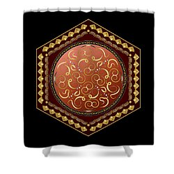 Circulosity No 3011 Shower Curtain