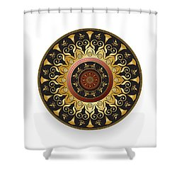 Circulosity No 3127 Shower Curtain
