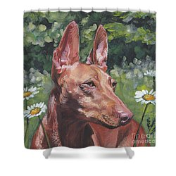 Shower Curtain featuring the painting Cirneco Dell'etna by Lee Ann Shepard