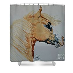Palomino Paint - Cisco Shower Curtain
