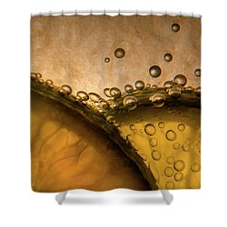 Citrus Abstract Shower Curtain