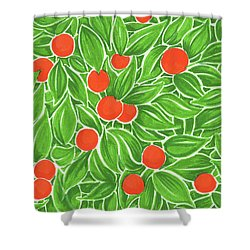 Shower Curtain featuring the drawing Citrus Pattern by Cindy Garber Iverson