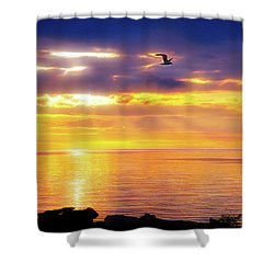 City Flare Heavenly Flight Shower Curtain