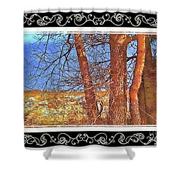 City Of Gold Scroll Border Shower Curtain