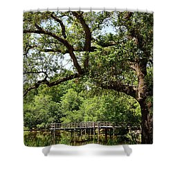 Shower Curtain featuring the photograph At City Park 1 by Nicholas Blackwell