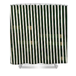 City Stripes Shower Curtain