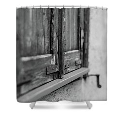 City Window Shower Curtain